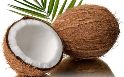 Coconut Products